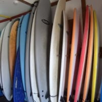 Great selection of boards